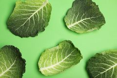 Green leaves of savoy cabbage on color background. Top view stock photography