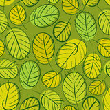Green leaves seamless background, floral seamless pattern, hand Royalty Free Stock Photography