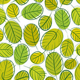 Green leaves seamless background, seasonal pattern Royalty Free Stock Photos