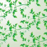 Green leaves seamless background Royalty Free Stock Image