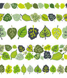 Green leaves seamless border pattern set.Stylized Royalty Free Stock Photography