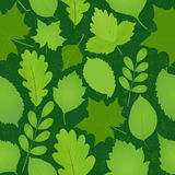 Green leaves seamless pattern. Seamless backdrop with green leaves on dark green background. Vector illustration royalty free illustration