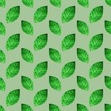 Green leaves seamless pattern background Stock Photo
