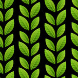 Green leaves seamless pattern Royalty Free Stock Photo