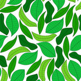 Green leaves seamless pattern. Illustration Stock Image
