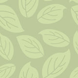 Green leaves seamless pattern. Natural retro  background. Stock Image