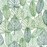 Green leaves seamless pattern Royalty Free Stock Image