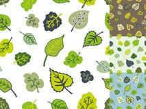 Green leaves seamless pattern set.Stylized falling Stock Photography