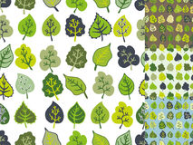 Green leaves seamless pattern set.Stylized leaf Stock Image