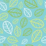Green leaves seamless pattern. Springtime Royalty Free Stock Photos