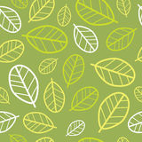 Green leaves seamless pattern. Springtime Royalty Free Stock Image