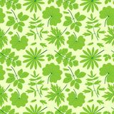 Green leaves seamless pattern. Royalty Free Stock Photo