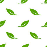 Green leaves seamless pattern Royalty Free Stock Photos