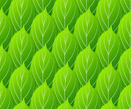 Green leaves seamless pattern vector Stock Photos