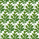 Green leaves seamless pattern vector Royalty Free Stock Images
