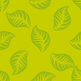 Green leaves seamless pattern. Vector design Stock Photos