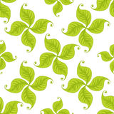 Green leaves seamless pattern. Vector design Royalty Free Stock Photo