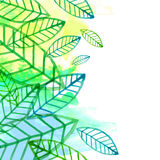 Green leaves seamless pattern. Vector illustration. Greeting car Royalty Free Stock Photo