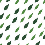 Green leaves seamless pattern on a white background. Royalty Free Stock Photos