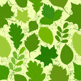 Green leaves seamless texture.Vector images Royalty Free Stock Photo