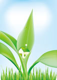 green leaves and small houses Royalty Free Stock Photo