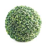 Green leaves sphere isolated Royalty Free Stock Images