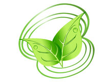 Green leaves with spirals Stock Images