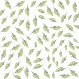 Green Leaves spring pattern Stock Photos