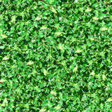 Green Leaves With Sunlight Seamless Pattern. This image can be composed like tiles endlessly without visible lines between parts Stock Photography