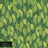 Green leaves surface texture. Pattern Stock Photography