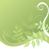 Green leaves and swirls background Stock Photos