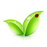 Green Leaves Symbol Stock Photos