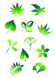 Green leaves symbols Royalty Free Stock Photography