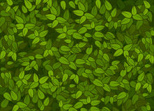 Green leaves texture. Texture consisting of green leaf, drawing vector illustration