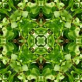 Green Leaves Tile Pattern Background 5 Stock Images