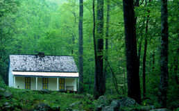 Green leaves and trees surround little white cabin in the Smokies. Royalty Free Stock Photo