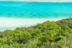 Green leaves with turquoise water of tropical beach on the backg. Round. Summer beach vacation background Royalty Free Stock Photography