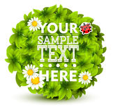 Green leaves vector border Royalty Free Stock Image