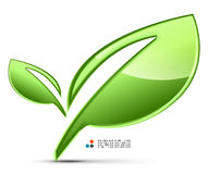 Green leaves vector Stock Image