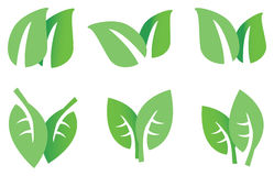 Green Leaves Vector Icon Set Stock Photos