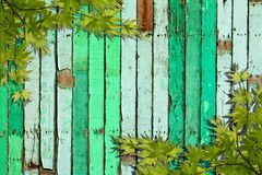 Green leaves on vintage green painted Stock Photography