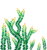 Green leaves on the wall royalty free illustration