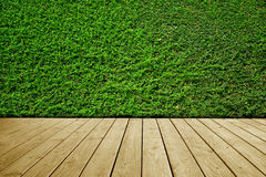 Green leaves wall background and brown wooden floor. Royalty Free Stock Image