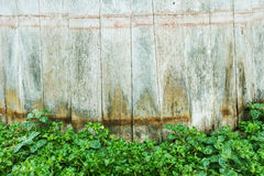 Green leaves wall and wood Stock Images