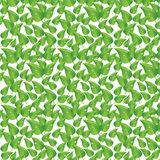 Green leaves and water drops background Royalty Free Stock Images
