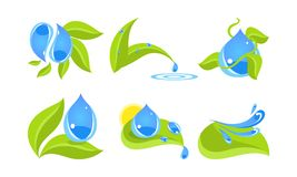 Green leaves and water drops set, ecology concept vector Illustration isolated on a white background.  royalty free illustration
