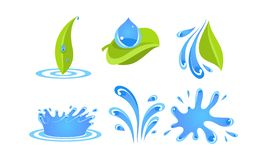 Green leaves, water drops and splashes, ecology concept vector Illustration on a white background. Green leaves, water drops and splashes, ecology concept vector vector illustration