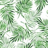 Green leaves. Watercolor seamless pattern Royalty Free Stock Photography
