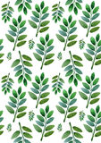 Green leaves on a white background Royalty Free Stock Images