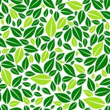 Green leaves on white background seamless pattern vector Stock Photos